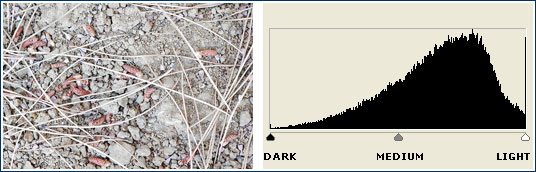 over-exposed histogram