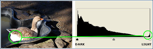 strong contrast histogram