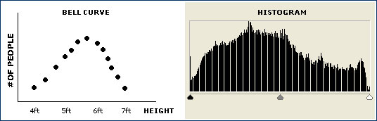 bell curve histogram