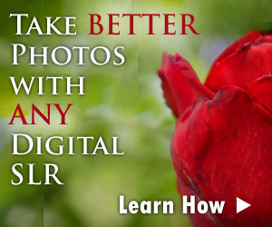 digital slr lessons
