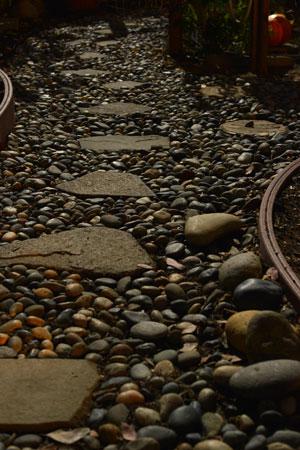 moonlit rock path