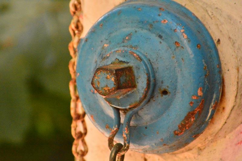 Nikon D7100 - Fire Hydrant